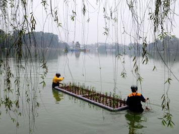Phương pháp thủy sinh được áp dụng tại Hồ Gươm