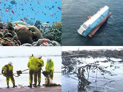 Hành động thiết thực để bảo vệ môi trường
