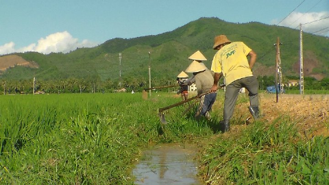 Hệ thống dẫn nước tưới tiêu nông thôn