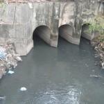 Thực hư chuyện lọc nước sông Tô Lịch… để uống